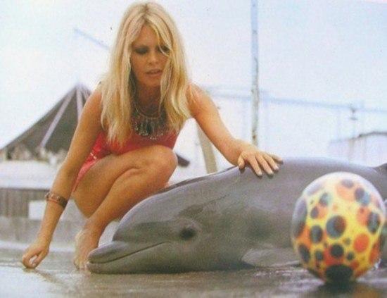 Бриджит Бардо за гуманное отношение к животным