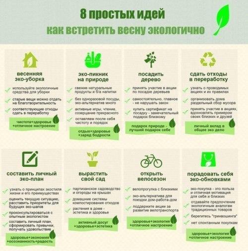 Жить экологично в городе можно!