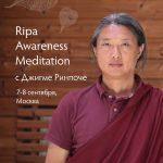 Презентация программы Ripa Awareness Meditation (Медитация Осознанности Рипа) с Джигме Ринпоче на фестивале ВегМарт!
